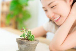 Doctorante parlant à son cactus